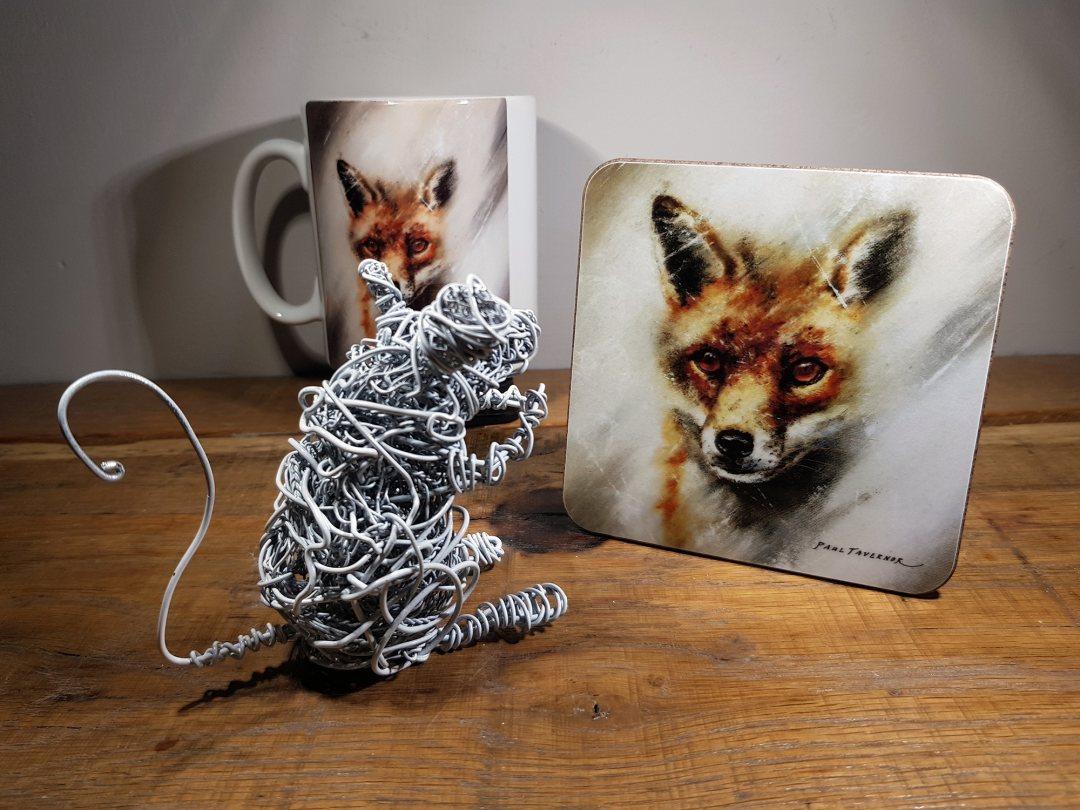Coaster Fox eyes