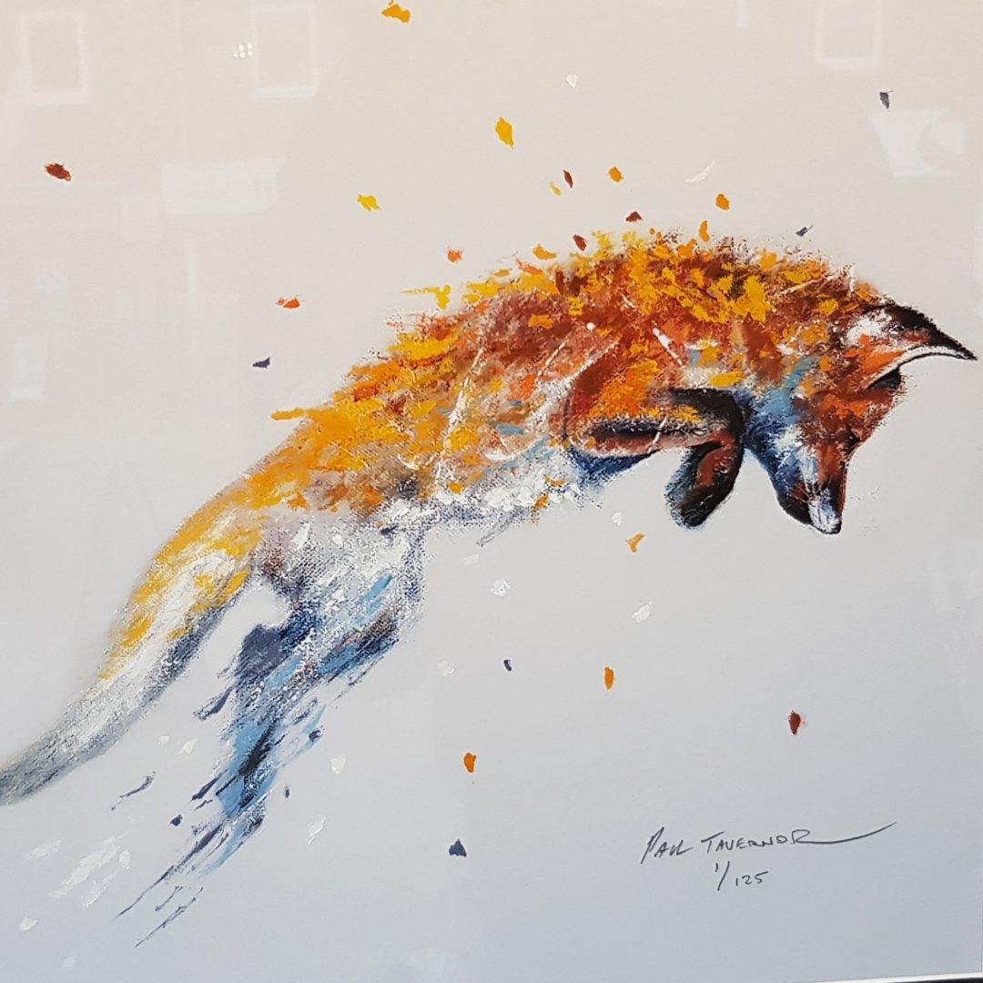 HPE Fox Caper