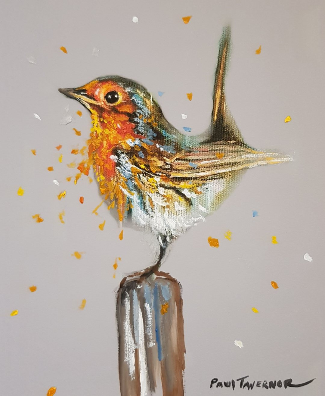 HPE Robin Red Breast