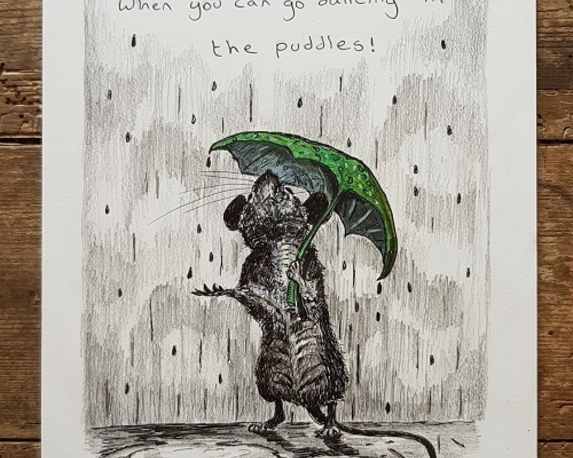 Dancing in the puddles from Paul Tavernor