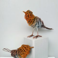 Wired Robins