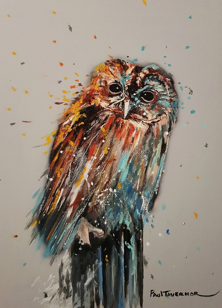 Night Owl by Paul Tavernor