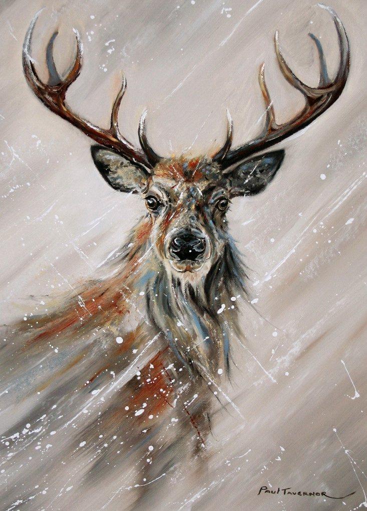 Peak Winter by Paul Tavernor
