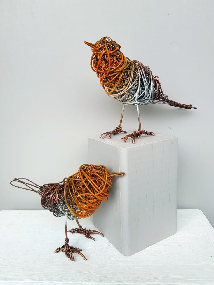 Wired Robins by Paul Tavernor